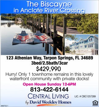 The Biscayne In Anclote River Crossing