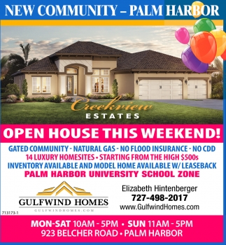 NEW COMMUNITY - PALM HARBOR