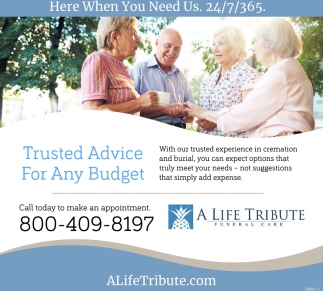 Trusted Advice For Any Budget