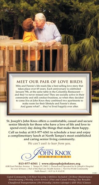 Meet Our Pair Of Love Birds