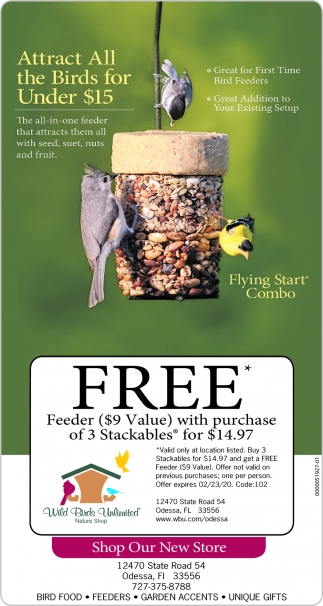 Attract All The Birds For Under $15