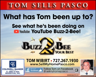 What Has Tom Been Up To?