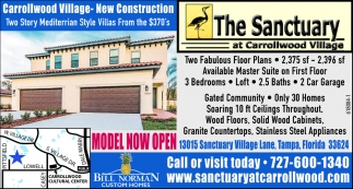 Carrollwood Village - New Construction