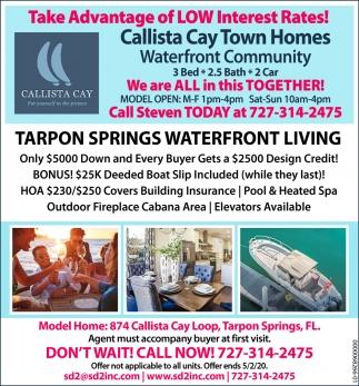 Tarpon Springs Waterfront Living