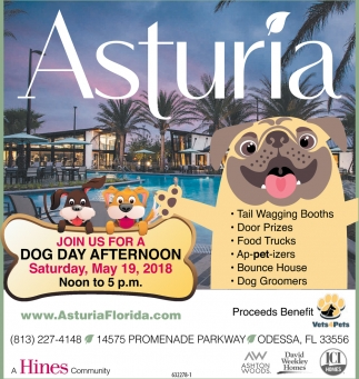Join Us For A Dog Day Afternoon